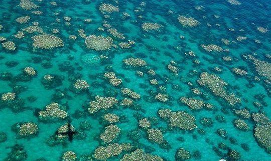 Third Great Barrier Reef bleaching event