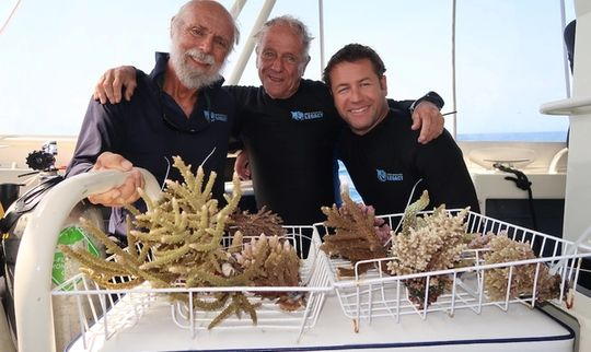 World's First Coral Biobank in Port Douglas Key to Reef Survival