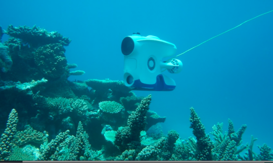 Underwater drone reveals important secrets of the Great Barrier Reef