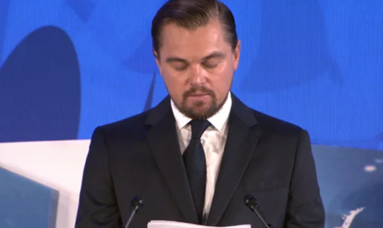 Legacy want Leonardo Dicaprio to Join Reef Fight in Port Douglas