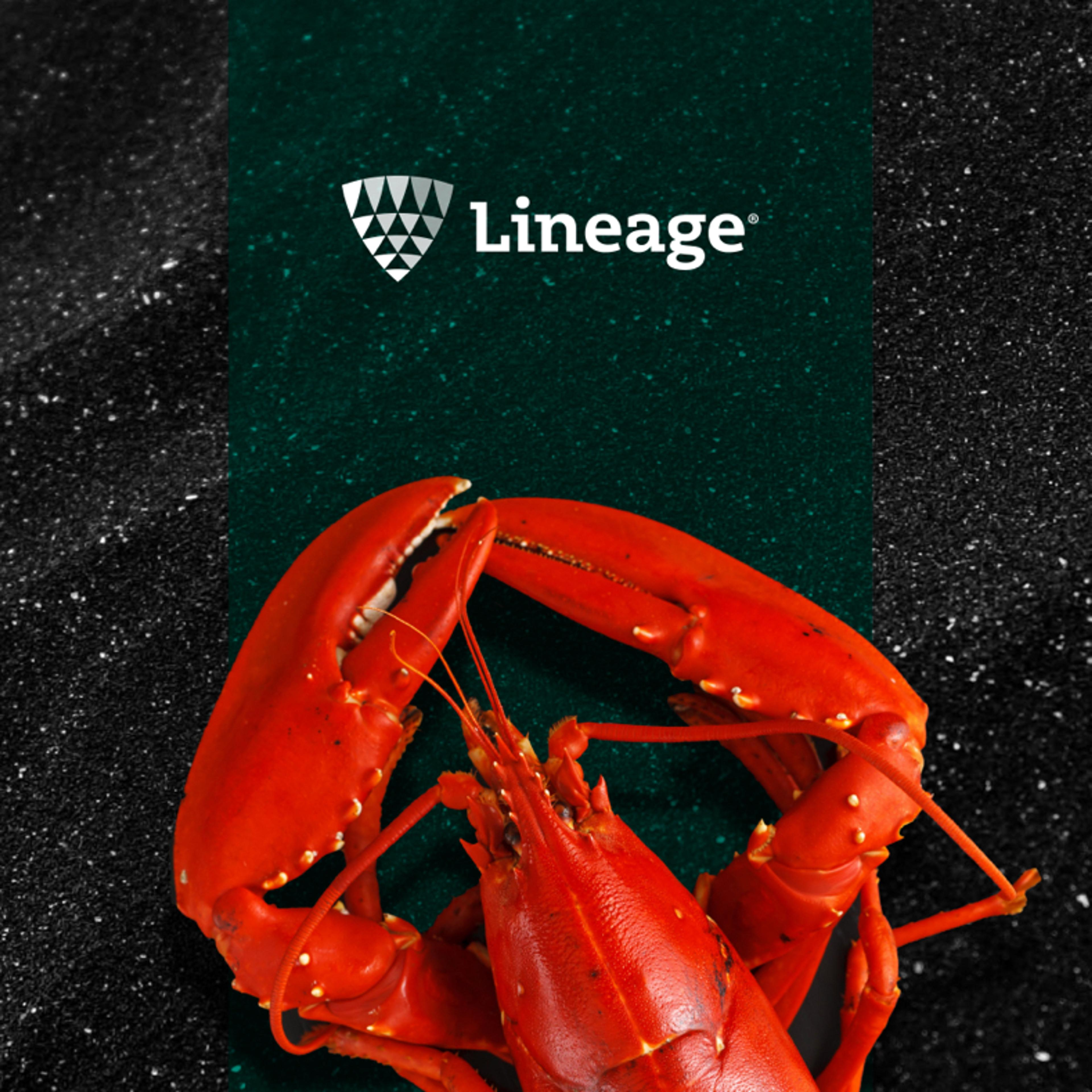 Lineage Logistics seafood campaign thumbnail