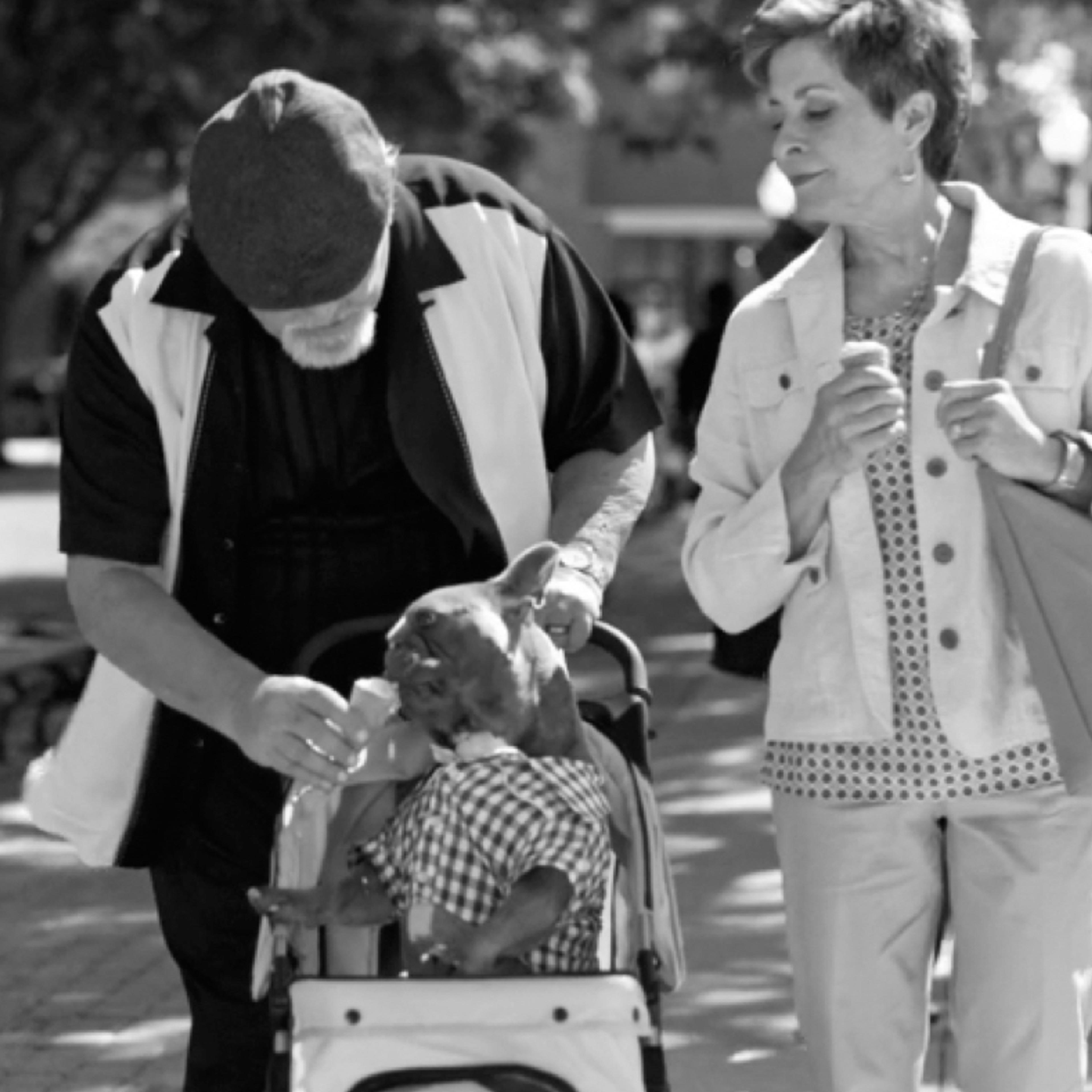 Couple feeding an ice cream cone to a dog in a stroller for BCBS video ad