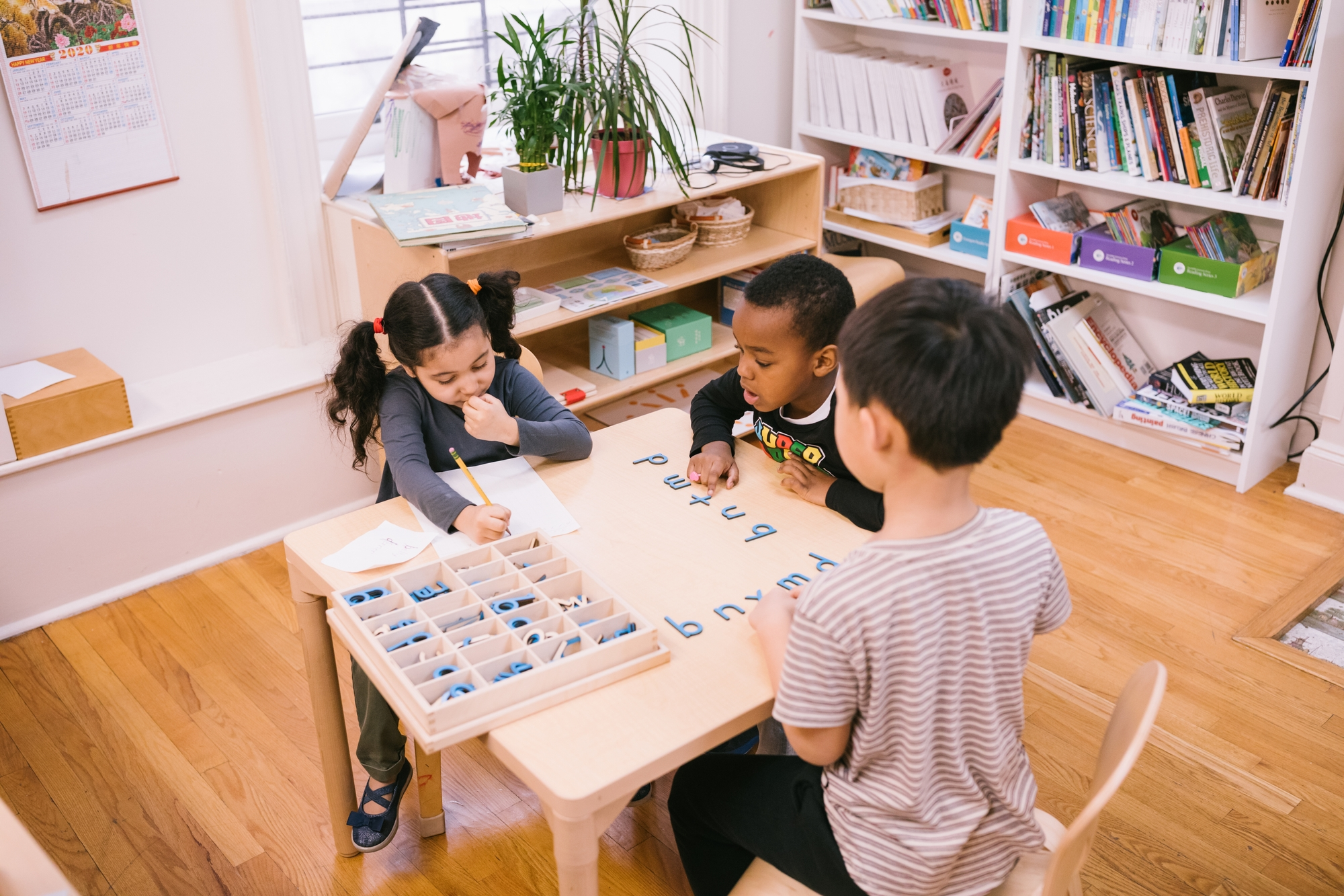 Montessori Teacher Diploma