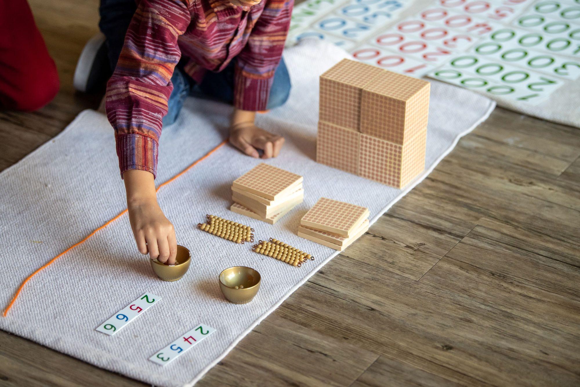 Module 5: Introduction to the Montessori Curriculum