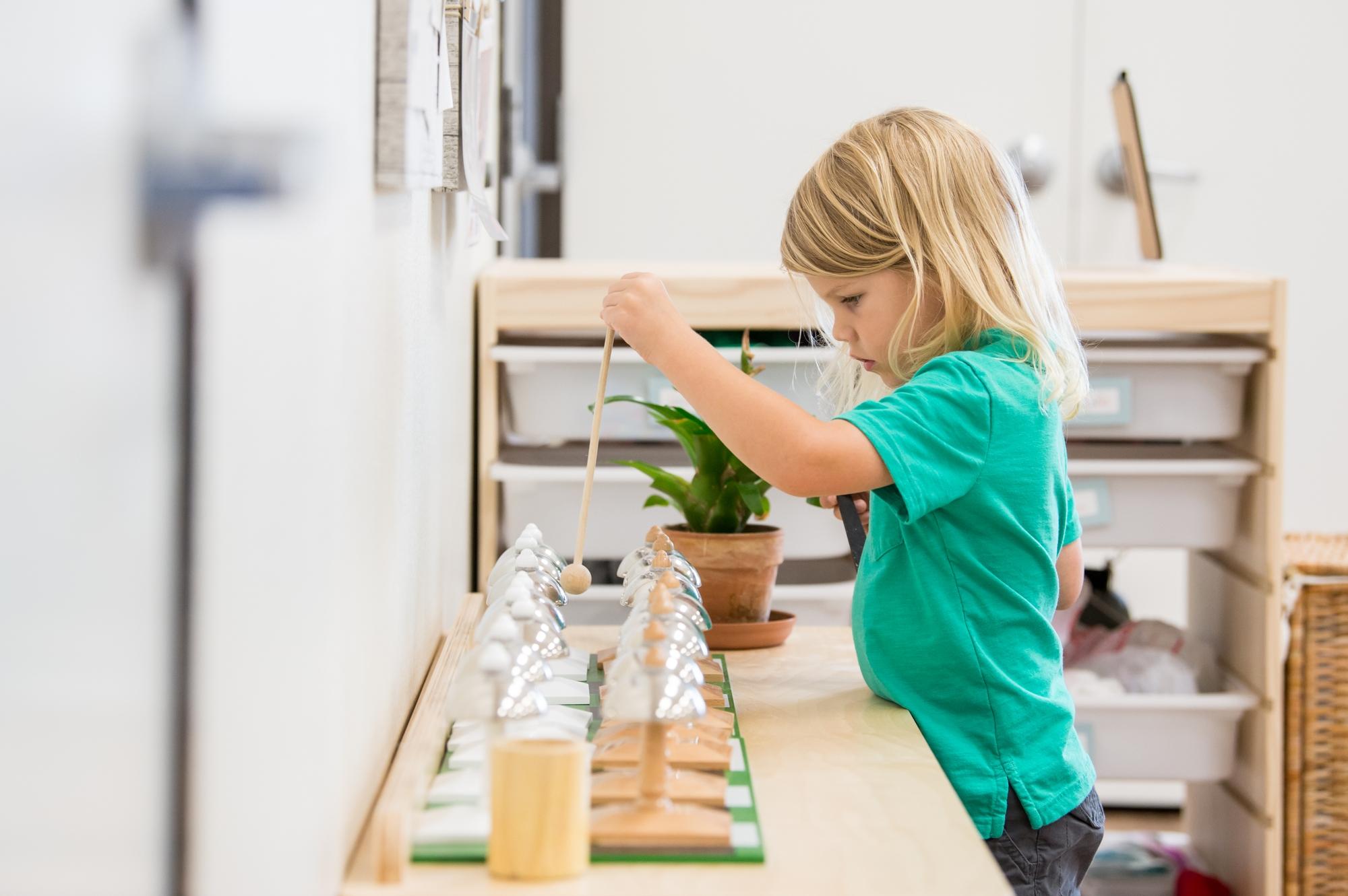 Children's House Master Class: Sensorial
