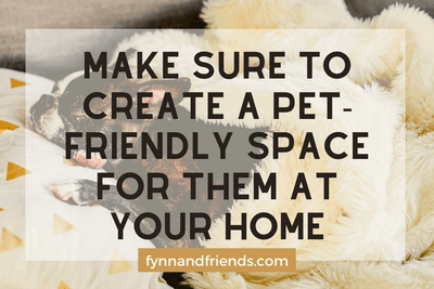 Make sure to create a pet-friendly space for them at your home with boston terrier puppy sleeping in background