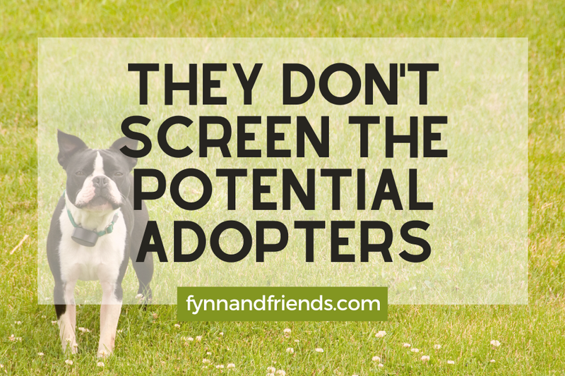They don't screen the potential adopters