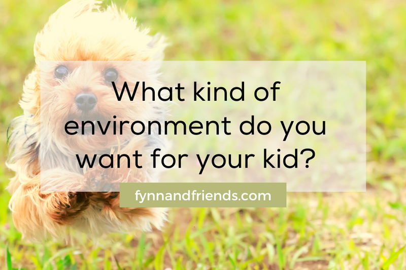 What kind of environment do you want for your kid? terrier breeds background