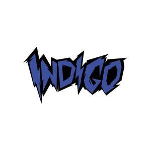 INDIGO STUFF