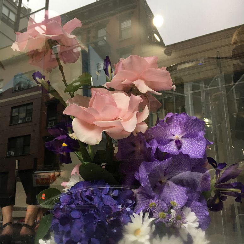 Pink and purple flowers in a window display.