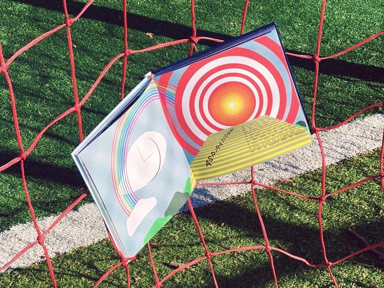 The Dimes cookbook on a soccer goal's net.
