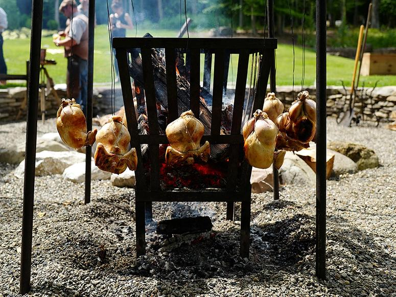 Chickens hanging around a grill in summer.