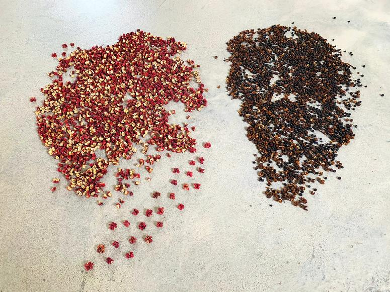 Small piles of red and brown peppercorns on concrete.