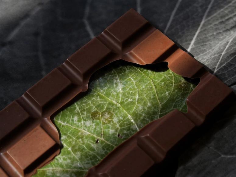 A chocolate bar with a green leaf inside.