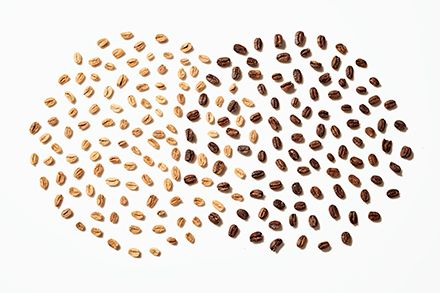 Unroasted and roasted coffee beans arranged in two, overlapping circles.