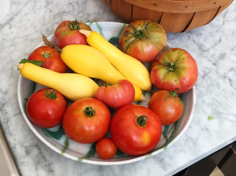 A bowl of yellow squash and tomatoes.