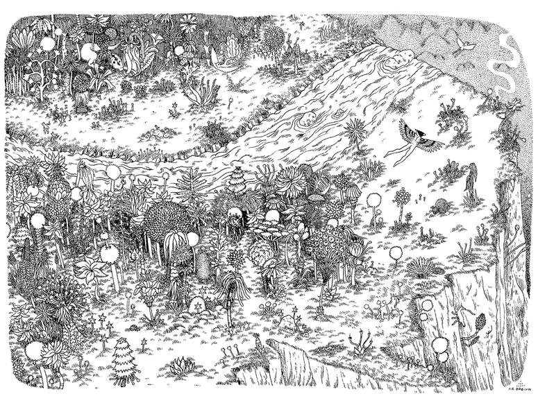 Black and white illustration of a forest on a cliff viewed from above