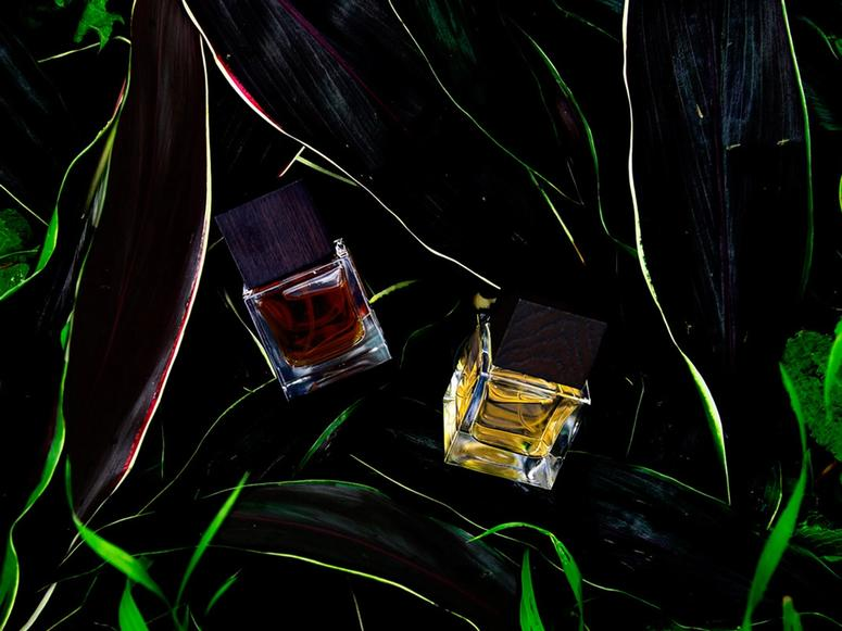 Two bottles of perfume in a darkly lit tangle of grass.