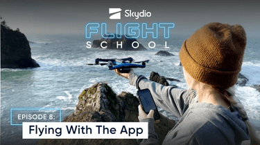 Flying with the app