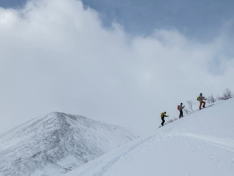 Evigvarende ski med kjerne av tre