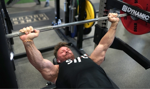 Banded Bench Press 101: How to, Why, & Benefits