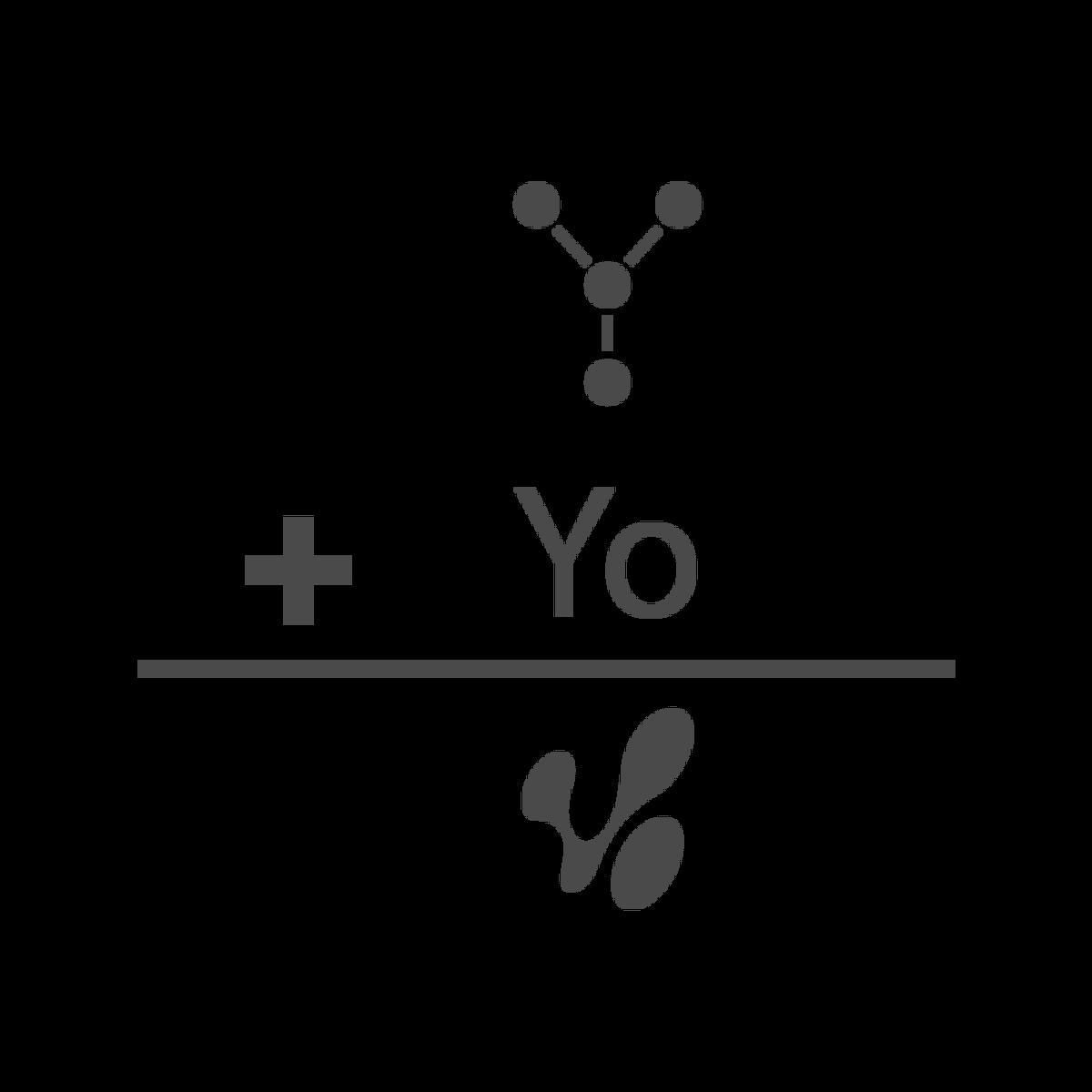 Proceso de creación del logo