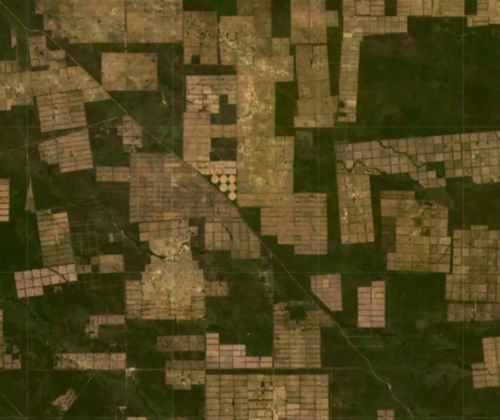 Satellite imagery of deforestation in the Chaco in Paraguay