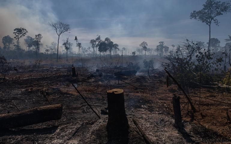 Forest fires in Mato Grosso State, Brazil