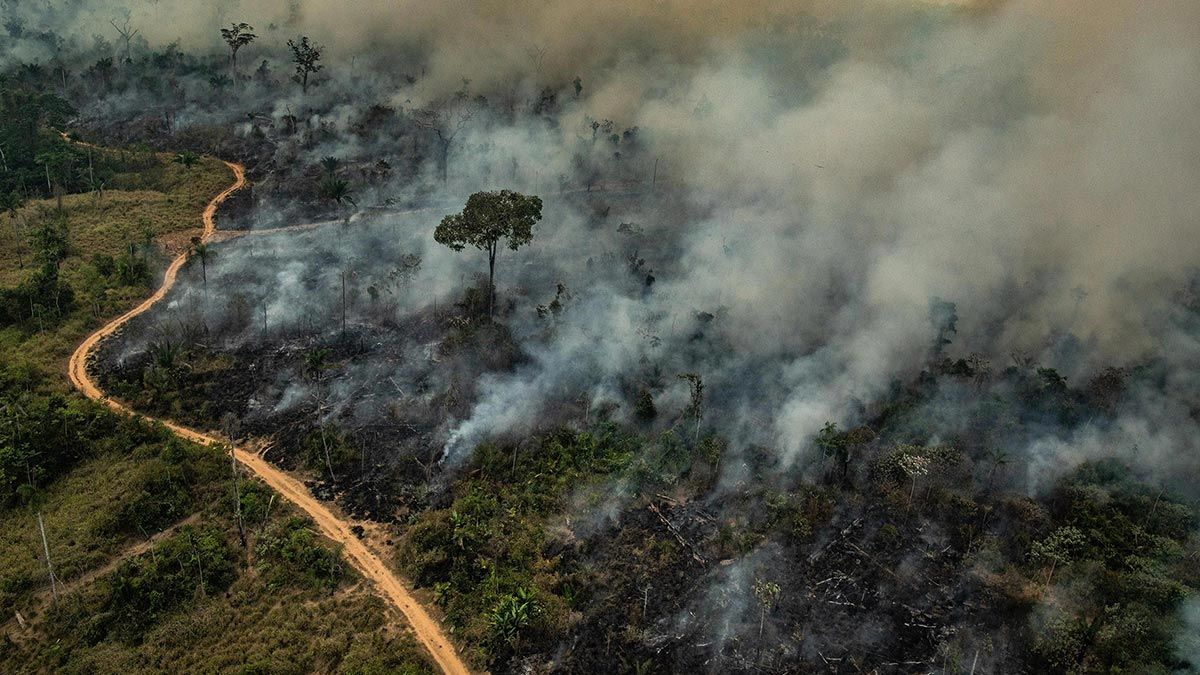 Photo of forest fire in the Gran Chaco