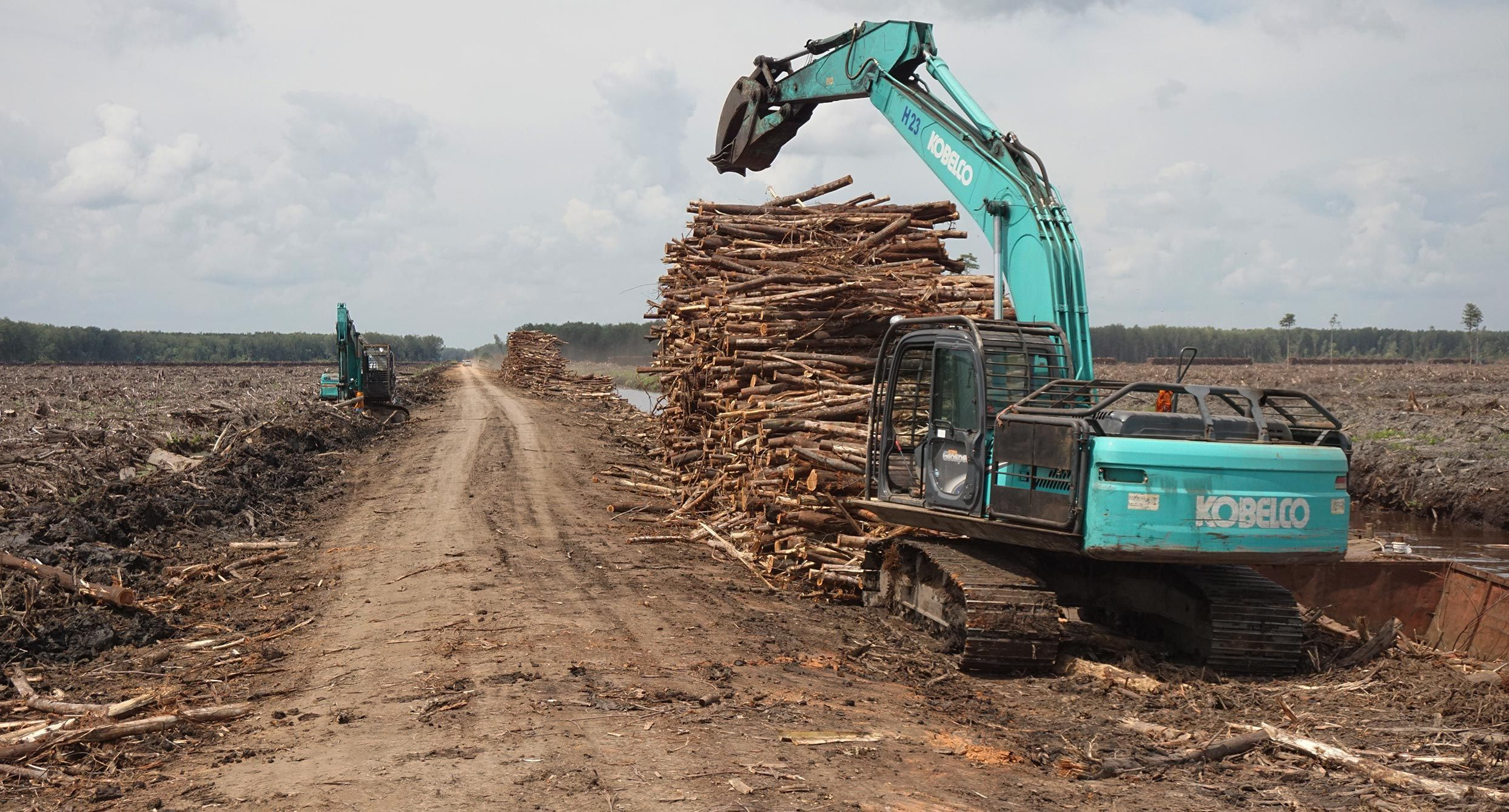 Deforestation in West Kalimantan