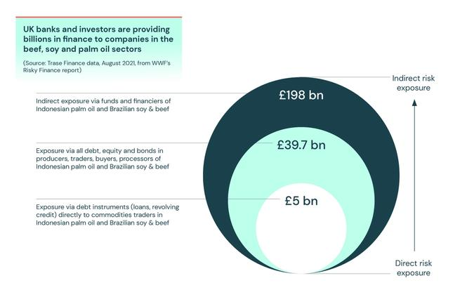 UK banks and investors are providing billions in finance to companies in the beef, soy and palm oil sectors
