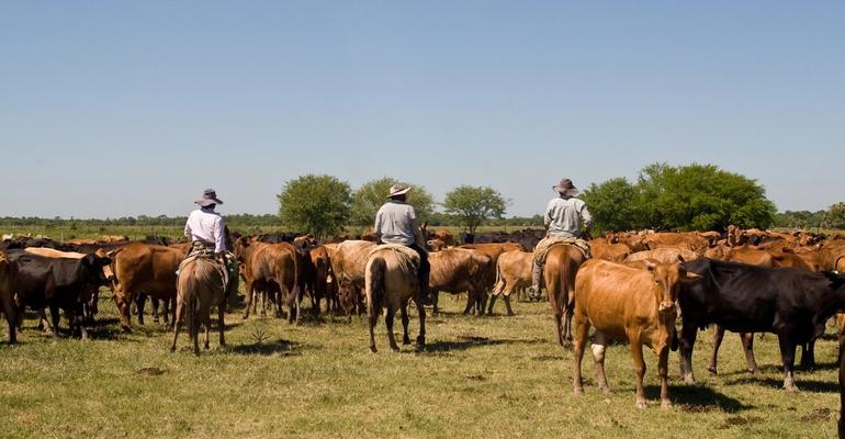 Gauchos in Paraguay