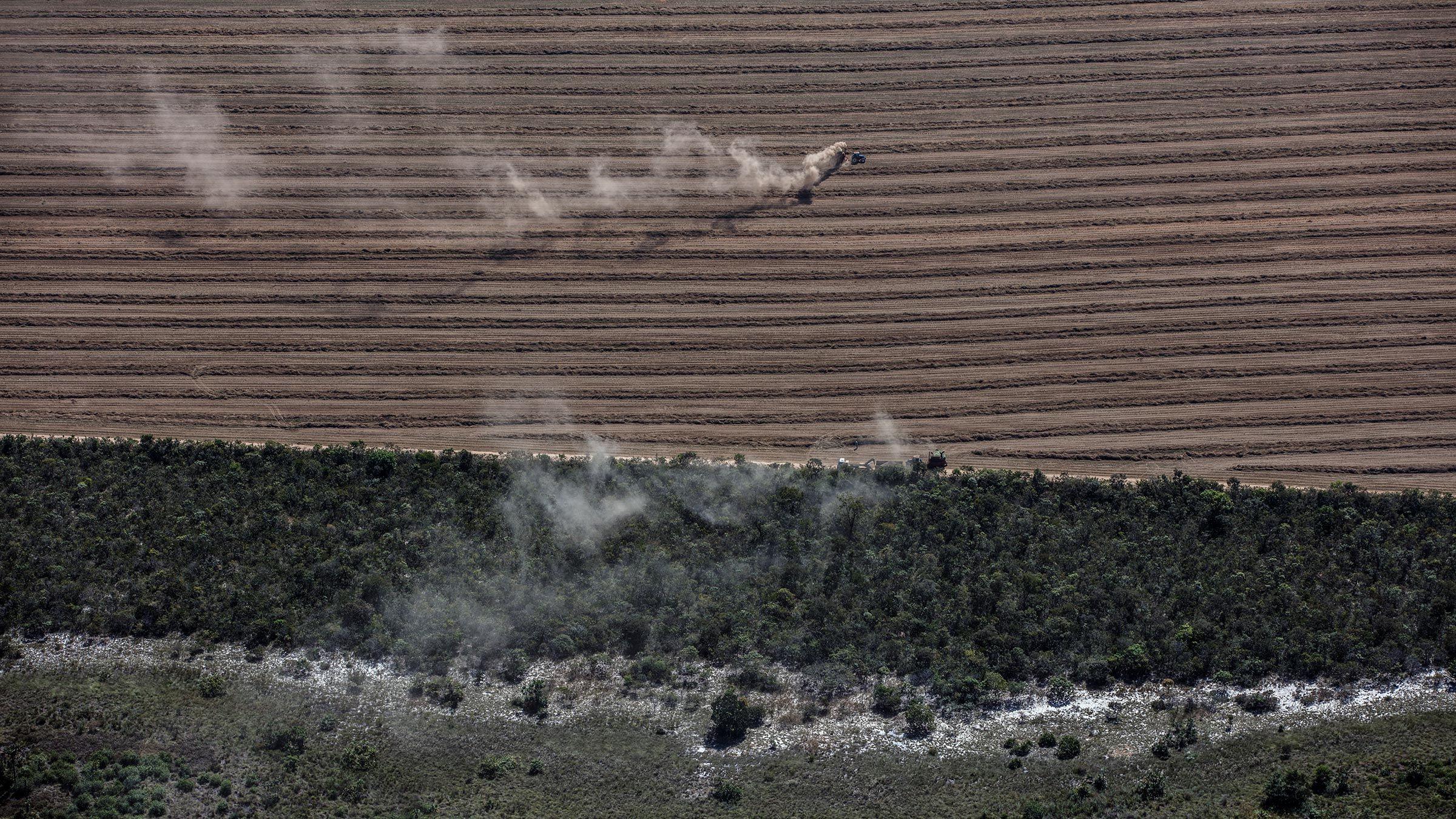 AGRIBUSINESS IN MATOPIBA