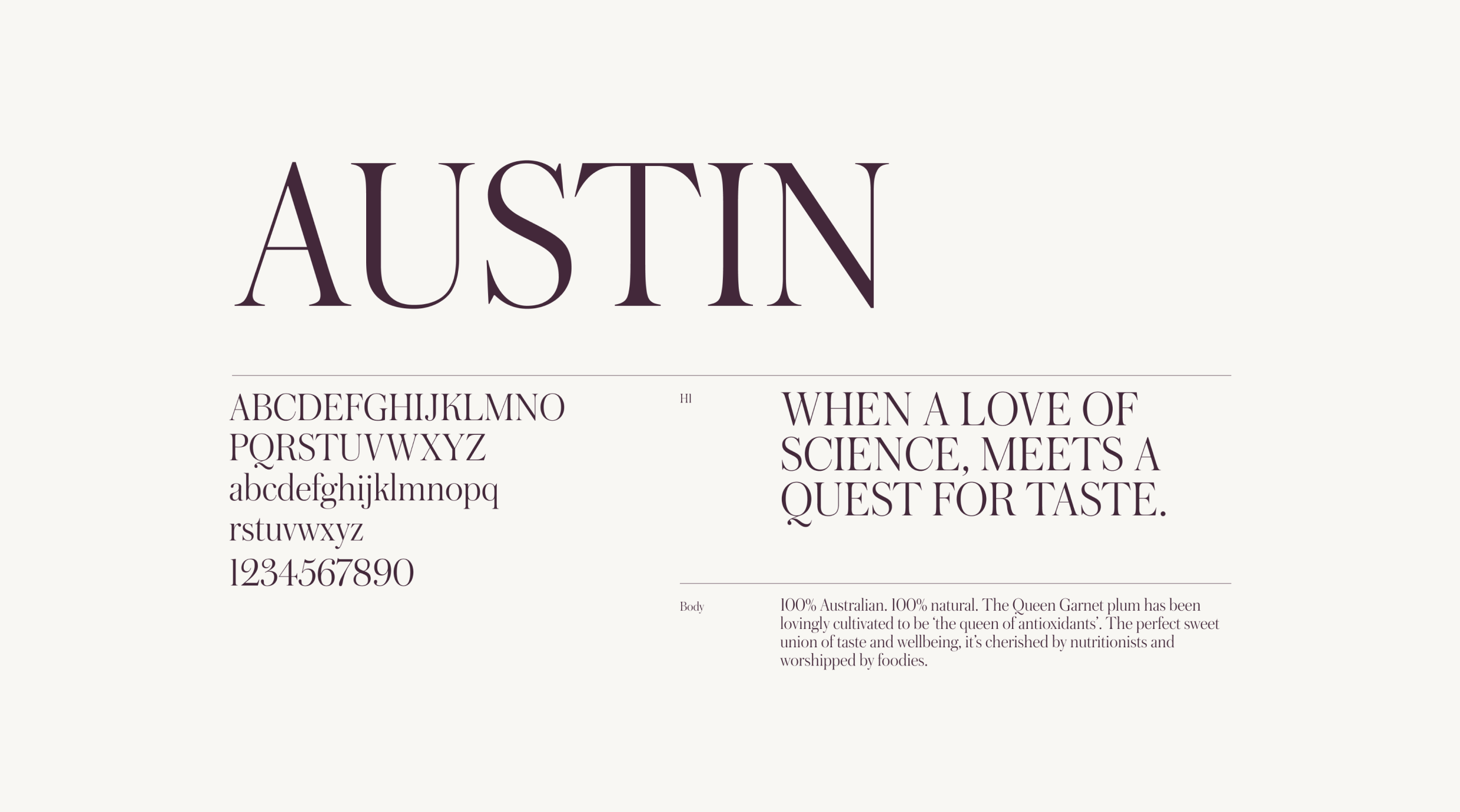Screen showcasing the Queen Garnet Austin font family