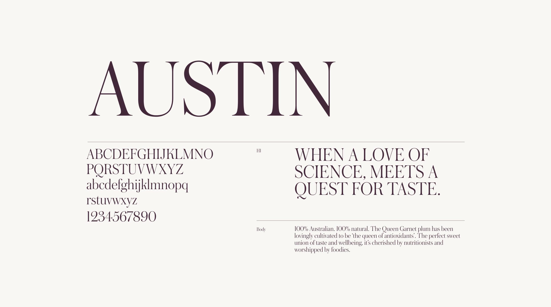 Screen showcasing the Queen Garnet Austin font family