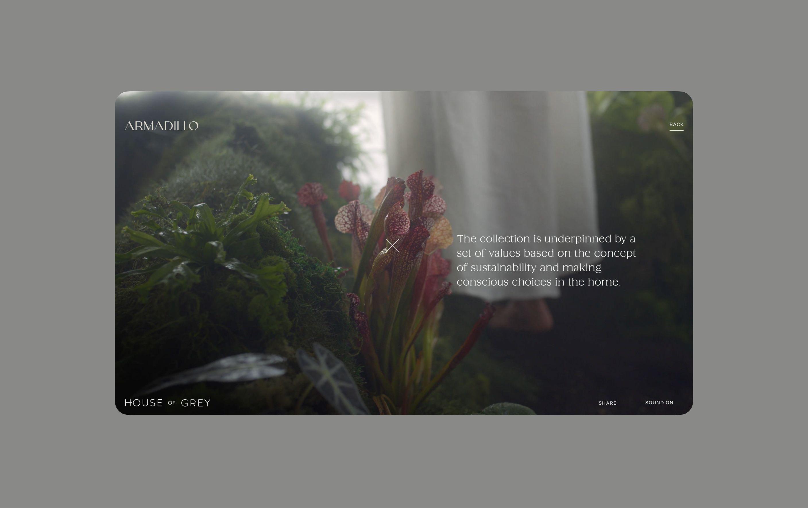 Rhythm of Nature experience screenshot