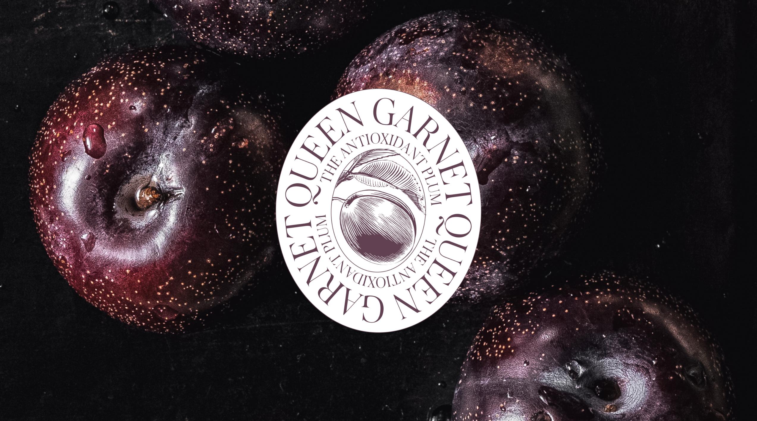 Queen Garnet logo overlaid over an image of Queen Garnet plums