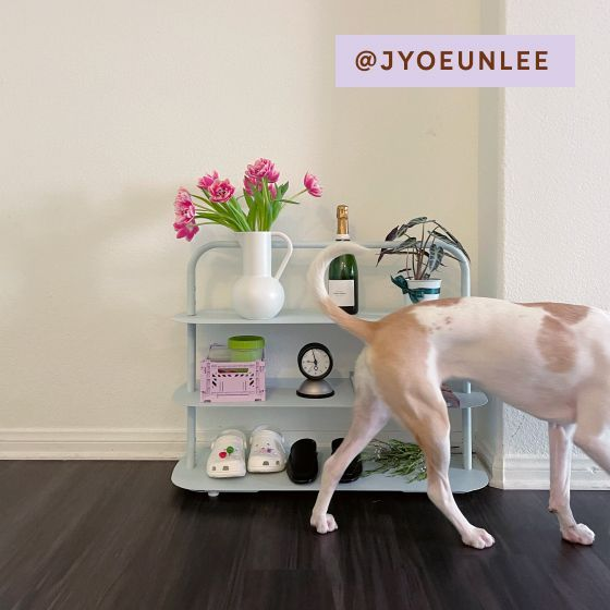 Image for [No Product Link] UGC - @jyoeunlee - Entryway Rack - Light Blue