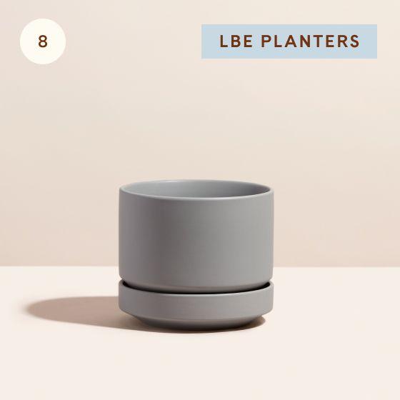 "Image for Hotspot - Living Room - 08 - LBE Planters 6"" Planter"