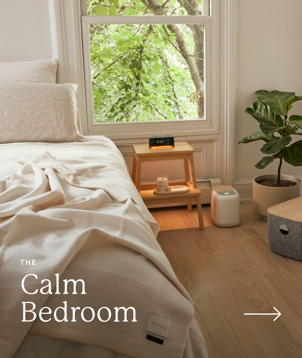 5050 Card - Calm Bedroom - Exit Ramp - Desktop Image
