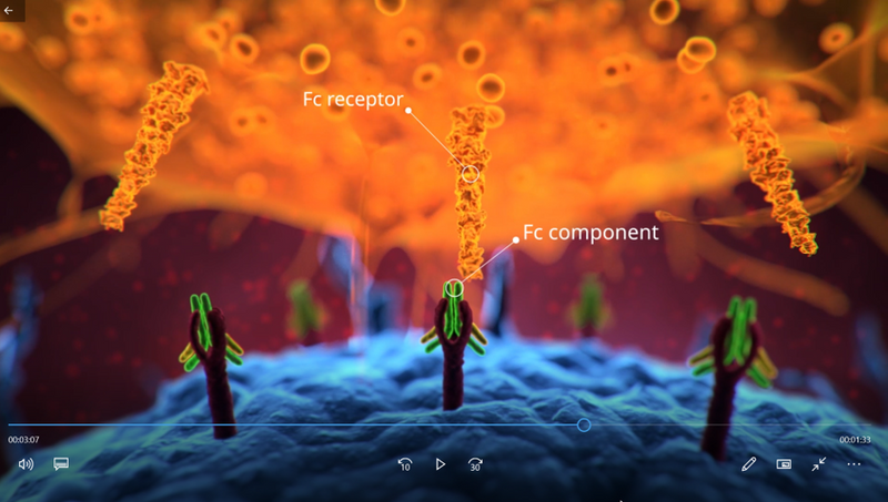 Still from the scientifically annotated 3D rendered animation