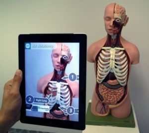 Augmented Reality for Anatomy Education