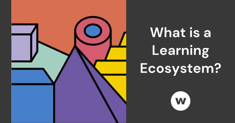 What's a learning ecosystem?