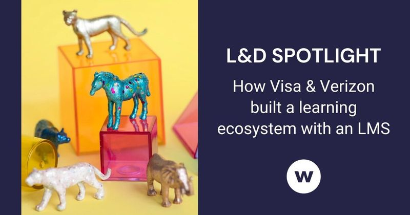 See how Visa has kept their LMS playing a key role in their learning ecosystem.