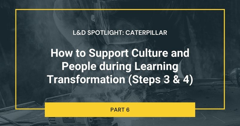 How to Support Culture and People during Learning Transformation