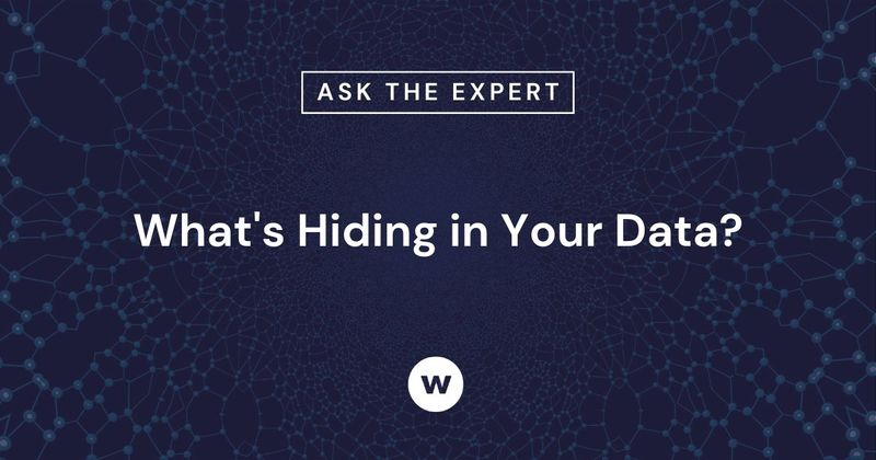 What's hiding in your learning and training data?