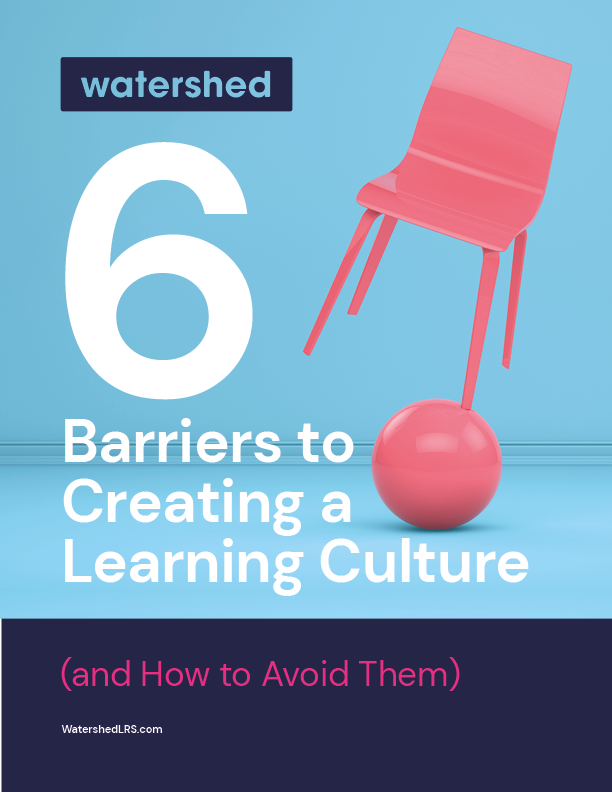 What is a learning culture?