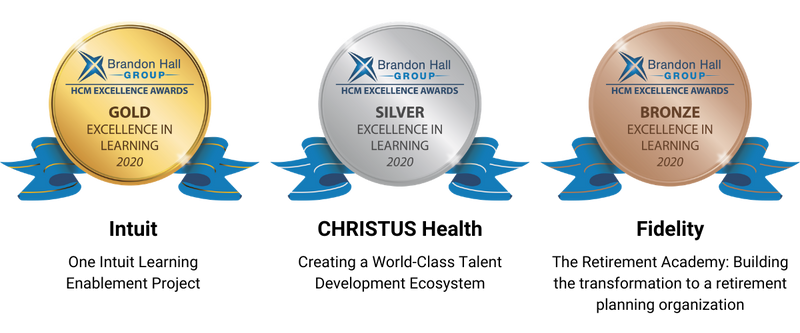 Brandon Hall Group Excellence in Learning Awards