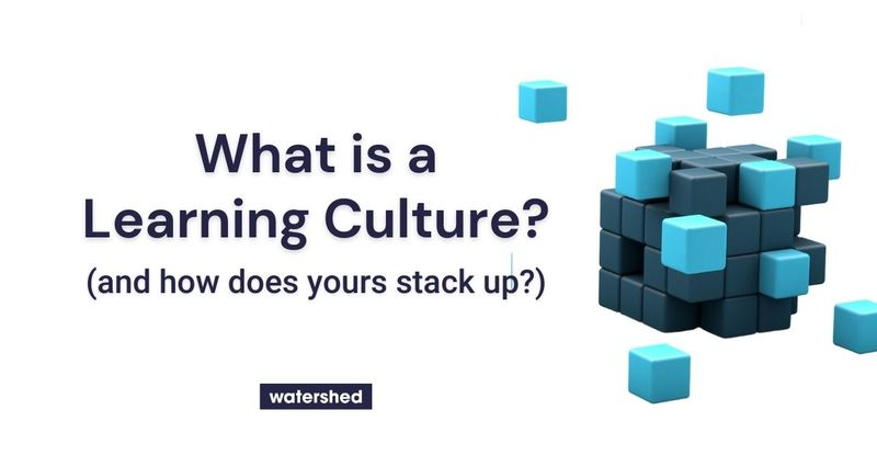 What is a Culture of Learning in the Workplace?