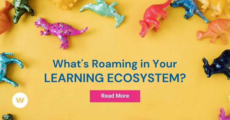 What is in a learning ecosystem?